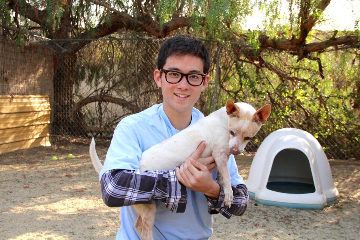 Masaki Takamatsu works his dog magic. Photo by Kai Lin.