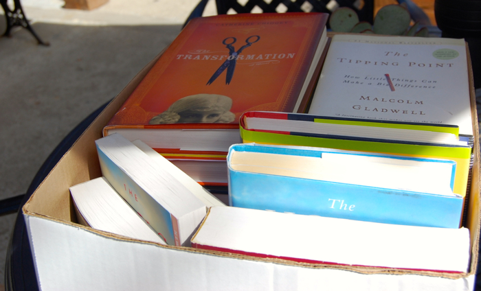 These are some of the books that found a new home at OVS -- Photo by Daphne Psaledakis