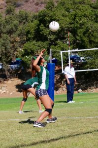 Serving specialist Nanako Tatewaki winds up to deliver the ball in a recent game.