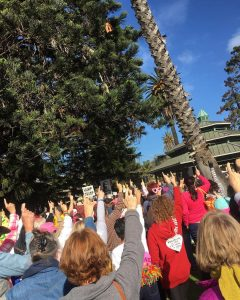 Protesters at Plaza Park in Ventura -- Photo submitted by Caitlin Cooper
